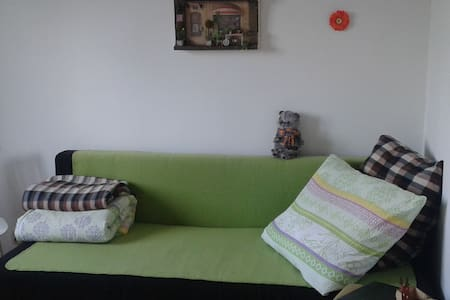 The room with central heating in a completely renovated apartment (bathrooms, kitchen, floor...). Administrative centre of the city, 10 minutes walk to the touristic centre (spring of mineral water). Free Wi-Fi. Very suitable for tourist visits.