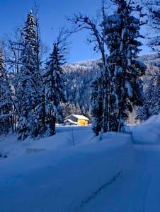 Naturparadies Wildenrain - Hittisau - Apartment