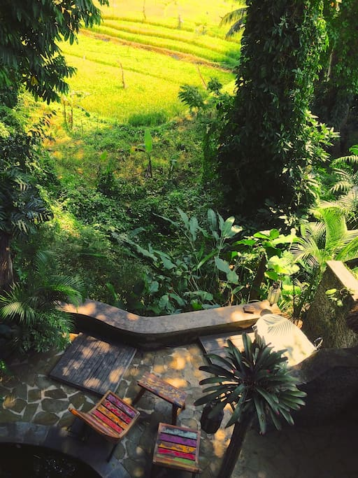 Private jungle/rice field patio. The new plunge pool will be built just above this.