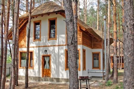 Getaway cabin near Kiev - Воропаев - House