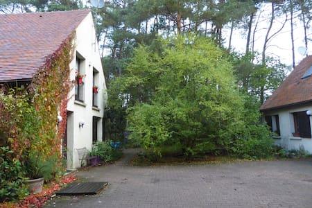 La Maison dans la Forêt de Fontainebleau - House
