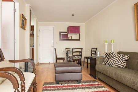 One bedroom apartment, close to everything! - Santiago - Appartamento