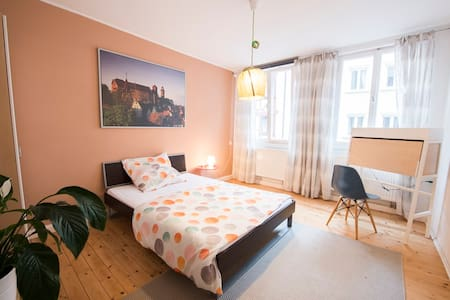 1 room apartment in the city center - Nuremberg - Apartment