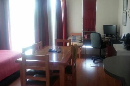 Home Studio close subway - Santiago - Apartment