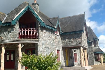 Castellated Parkland house in Tipp - Bed & Breakfast