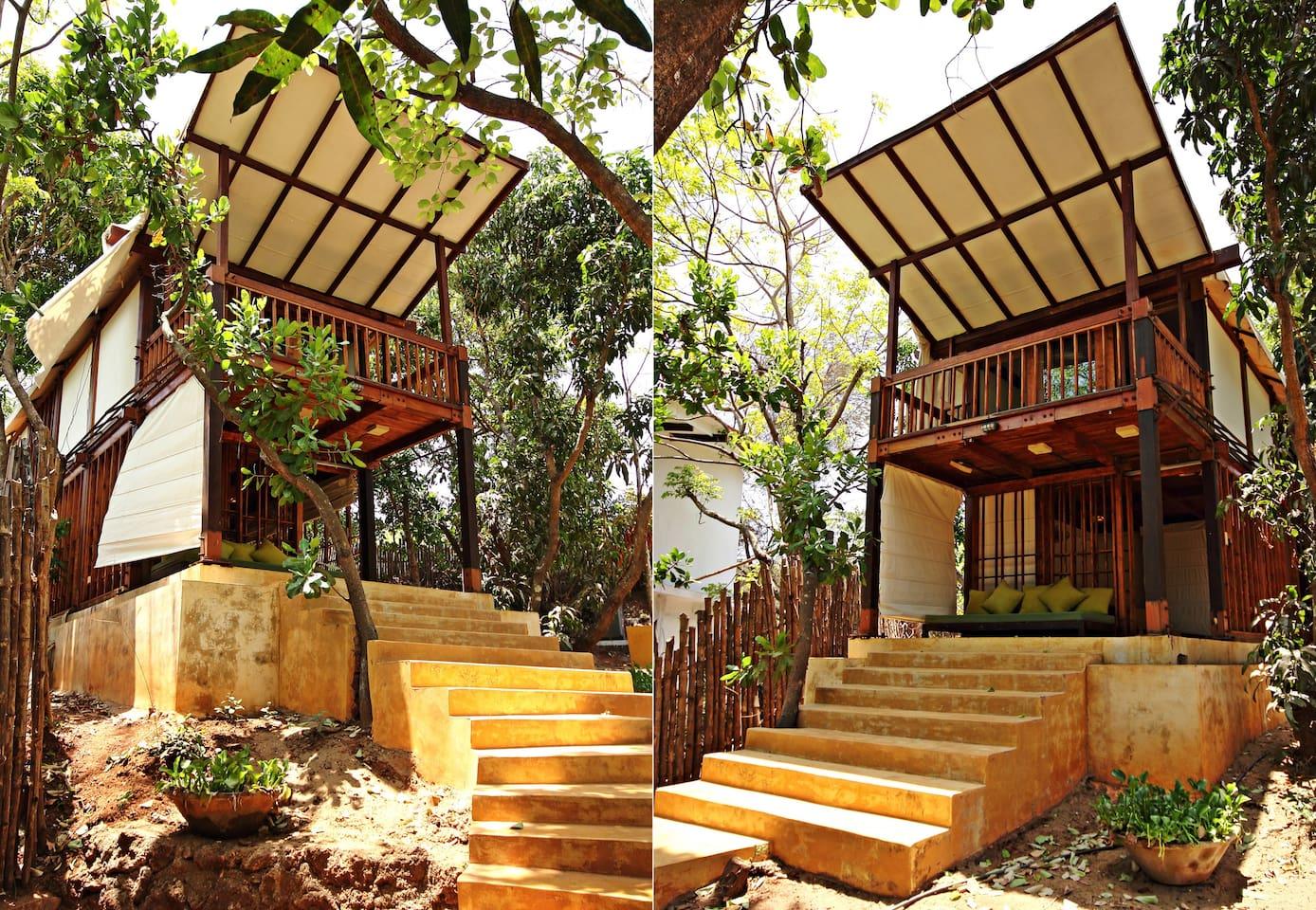 Beach Side Tree House Experience