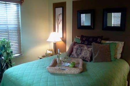 Large Comfy Room in Heart of SWF - Bonita Springs - House