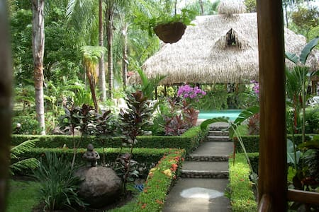 La Palapa B.- Living in the tropics