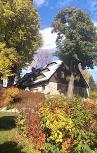 Przytulny pokój z widokiem na góry - Sala sypialna