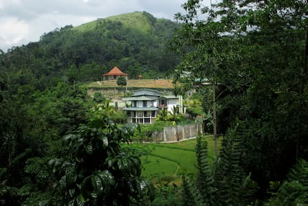 The Paddyfield Hideaway and Octagon - Bed & Breakfast