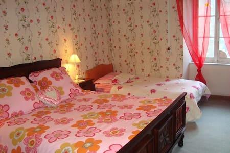 LA BOULZANE - Chambre MONTSEGUR - Bed & Breakfast