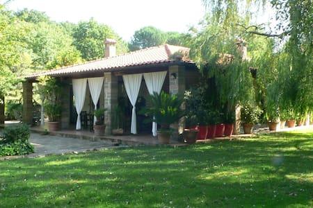Villa with swimming pool - Manziana - Villa