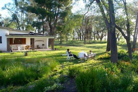 Farm in La Pampa !