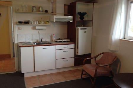 Nyrenoveret lille lejlighed i Skive - Apartament