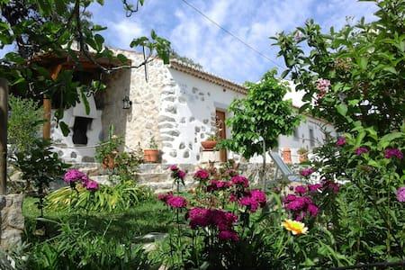 Rural tourism - Villa - Casa de camp