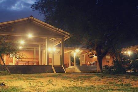 Hide Yala - Tissamaharama