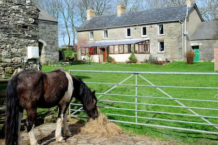 Old Stone Farmhouse in West Wales - Penparc - Bed & Breakfast