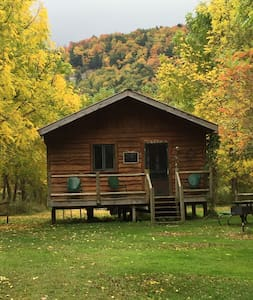 "Catskill Mountains ""Mohican"" Cabin - Downsville - Ház"