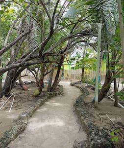 Oak Ridge Cay - Roatan - Dům