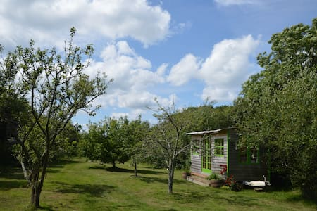 2 comfortable cabins in a beautiful orchard - Shalfleet - Lejlighed