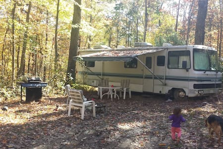 32' RV in Nat'l Forest-Walk to Rivers & Trails - Hinton