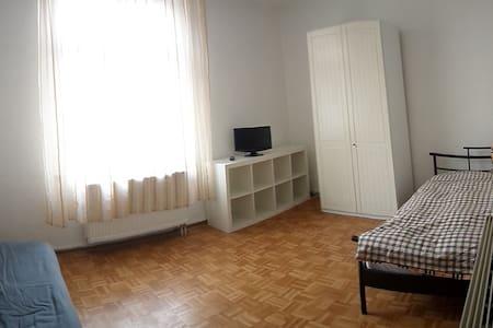 Zimmer Landau Zentrum  2 - 3 P DZ - Lägenhet