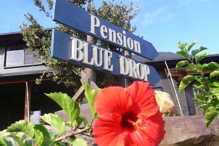 Pension BLUE DROP, a cozy twin room - Yakushima