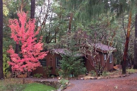 Trinity River Cabin Hideaway - Kisház