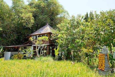Ubud Vegetarian House - House
