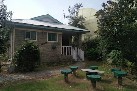 Cozy Magnolia Cottage at Nagri, Palampur - Bungalow