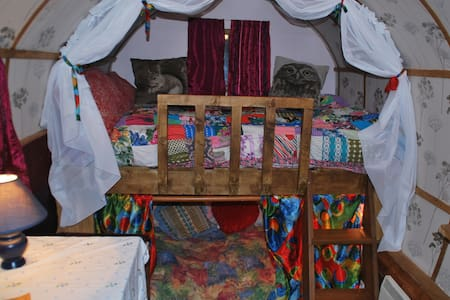The wonderly gypsy wagon - Fintown - Other