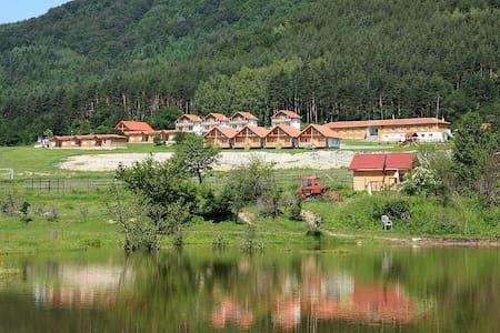 Caccia vacanza in Bulgaria - Karlovo - Other