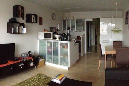 Cozy flat in Copenhagen's heart