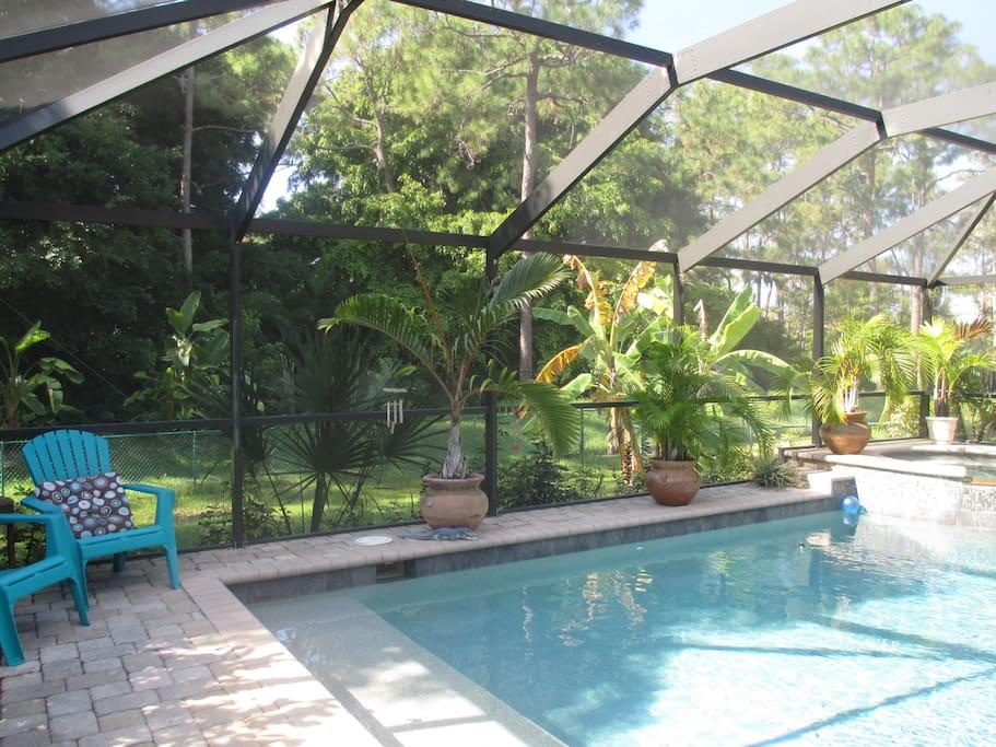 Pool Spa area