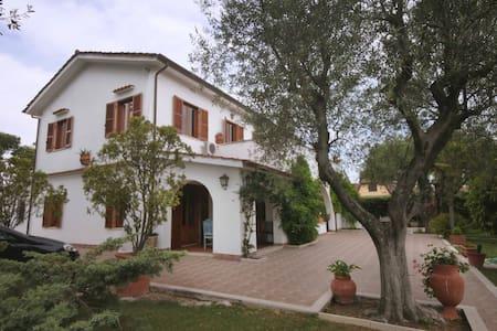 Splendid Villa near Rome  - Tor San Lorenzo