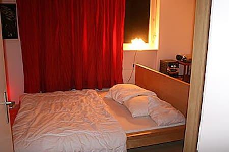 Privateroom 10 min. from Basel. - Kaiseraugst - Huoneisto