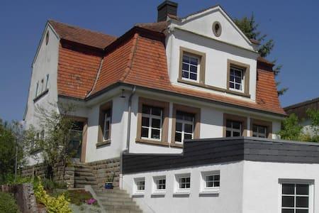 gemütliche Wohnung mit Garten - Clausen - Apartment