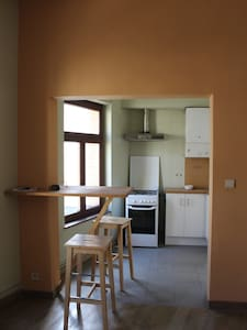 Two bedrooms apartment. - Ixelles - Apartment