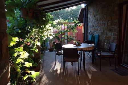 Peaceful cozy apartment in Istria - Marezige