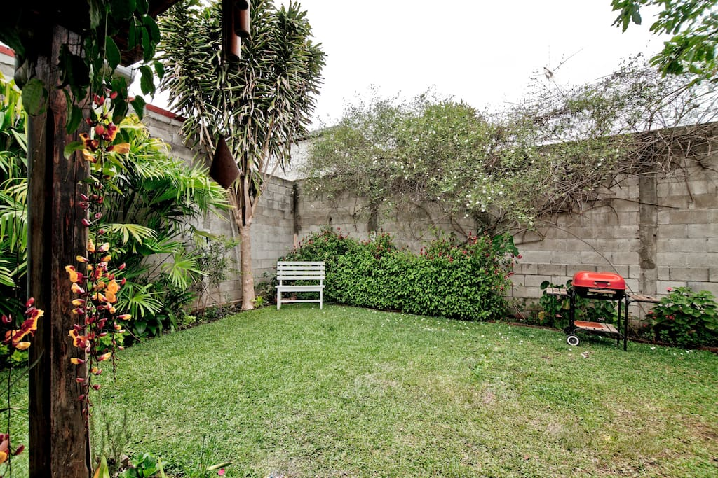 Backyard,  Great outdoor space.