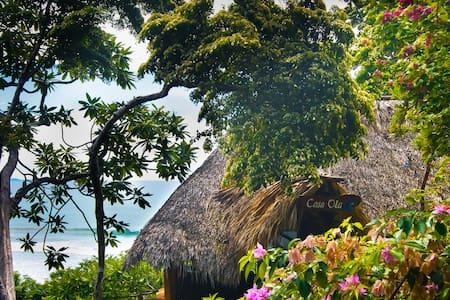 Costa Dulce Beachfront Paradise - Egyéb