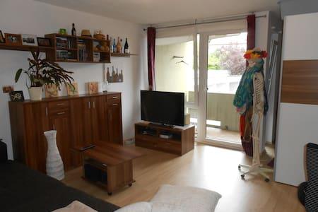 1ZKB Wohnung, zentral in Tübingen - Tübingen