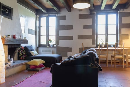 Charming Geneva Duplex Flat on a Pedestrian Square - Apartmen