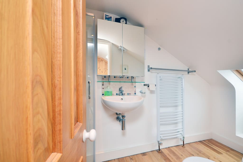 Mirrored scabinet and heated towel rail