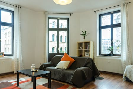 Large, Clean, Flat in city (WiFi)