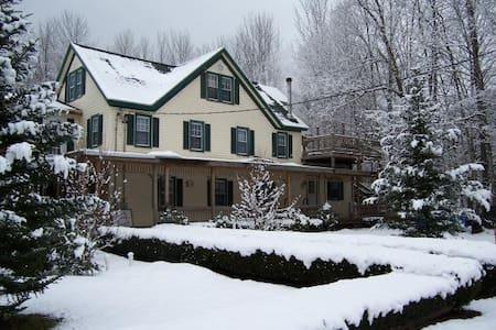 Hunter Mt House of Lanesville - Ház
