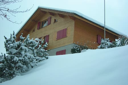 My Swiss Ski Chalet sleeps 10 (12 at a squeeze) - Chalet