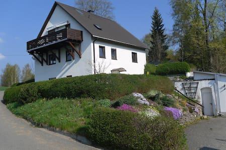Ferienwohnug im schönen Erzgebirge - Apartment