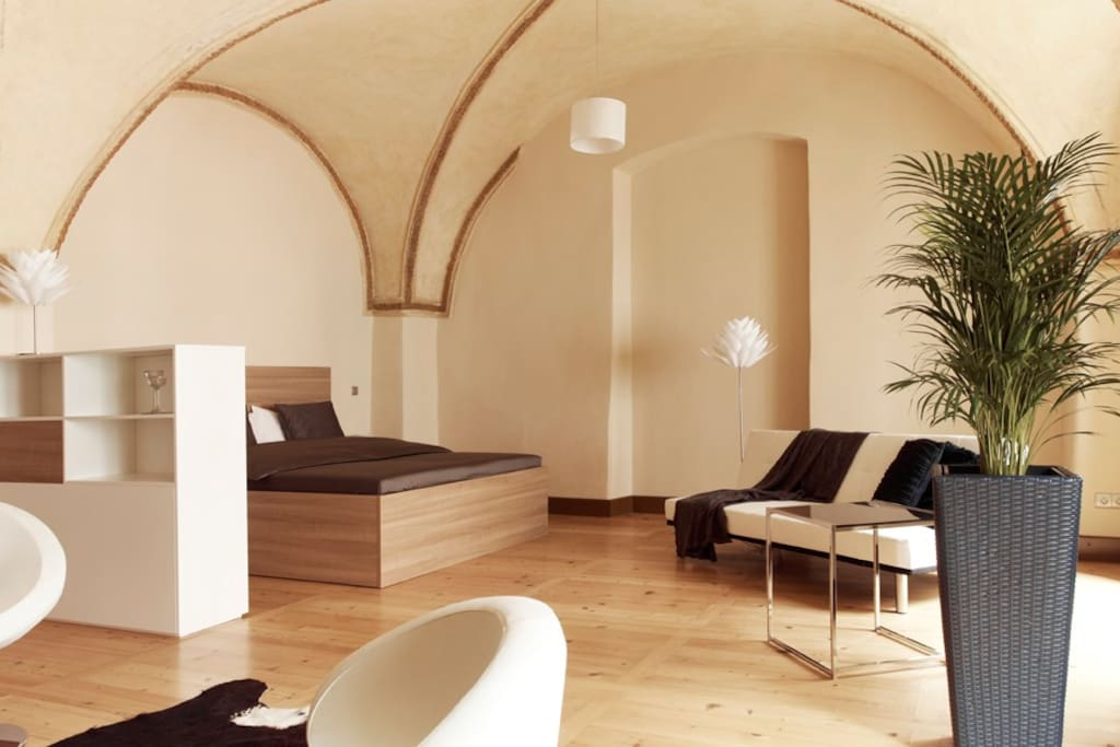 Royal palace 1 luxury 2 br old town in prague for Royal boutique residence prague tripadvisor
