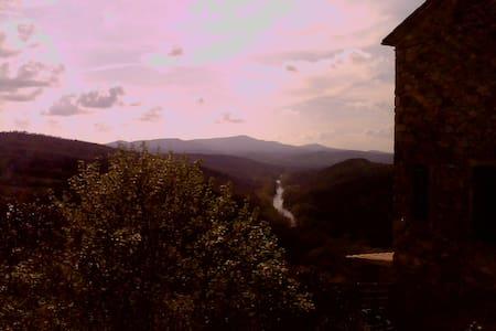 Appartamento nelle colline Toscane  - Cinigiano